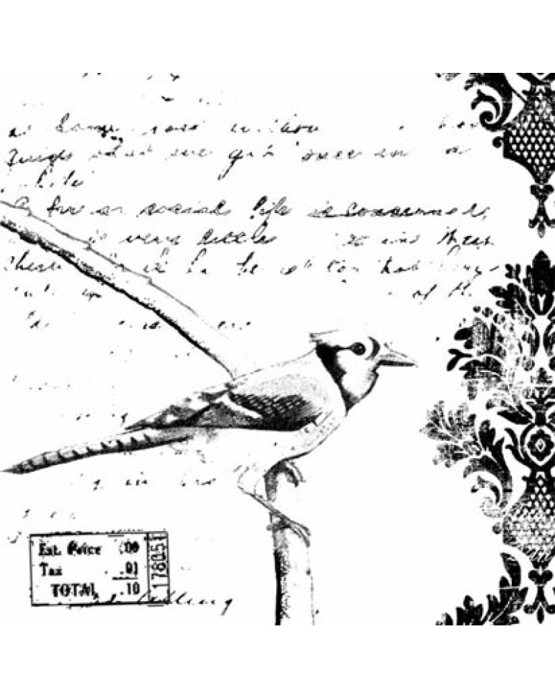 GRS2121 Bird and Words Collage Cling Stamp