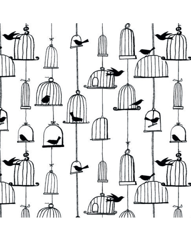 GRS2097 Bird Cages BackGround