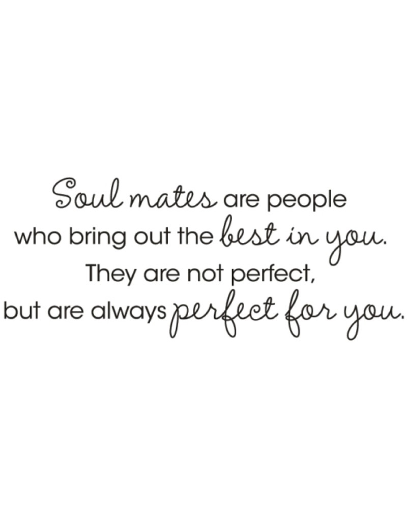 VD-7 Soul Mates Are People