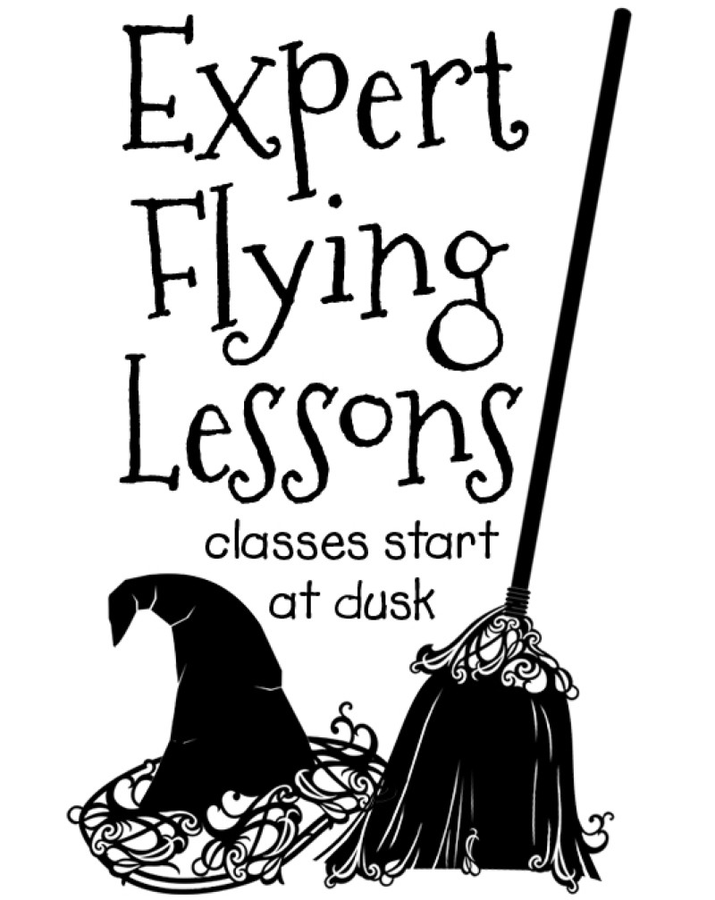 WW1024 Expert Flying Lessons